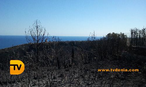 fotos-dia-12-incendio-tvdenia5