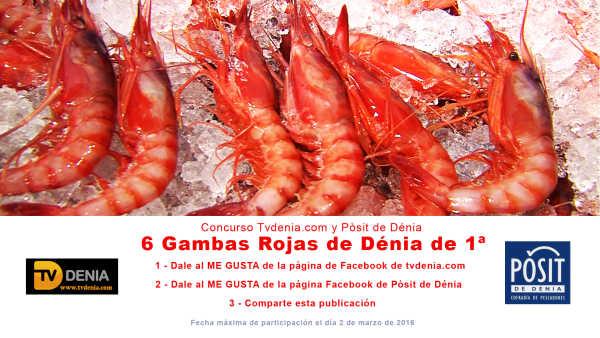 Concurso 6 Gambas Rojas tvdenia y posit