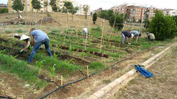 20160720_Curs_agricultura_ecologica_03