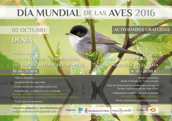 cartel_dia_mundial_aves