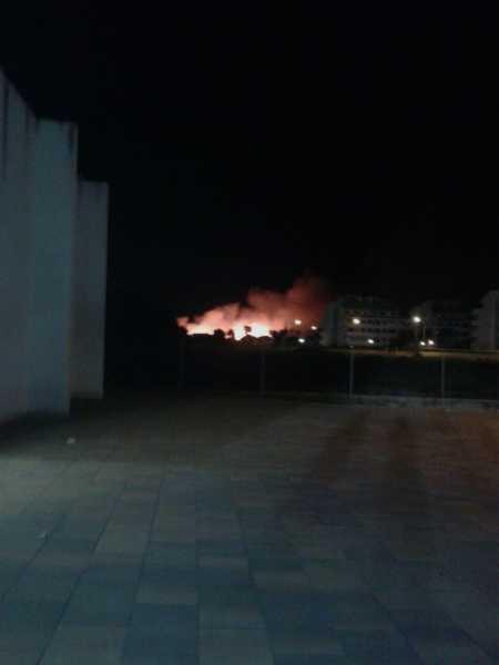 incendio-terrenos-el-datiler-1