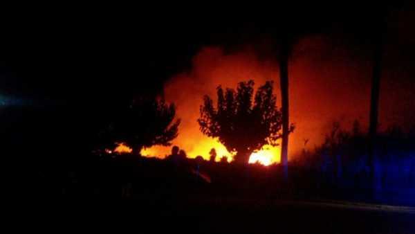incendio-terrenos-el-datiler-10