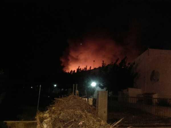 incendio-terrenos-el-datiler-2