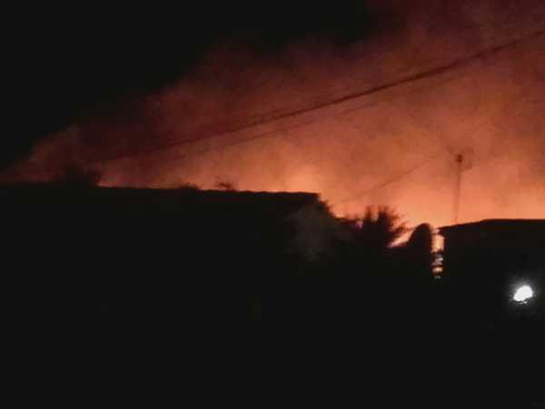 incendio-terrenos-el-datiler-3