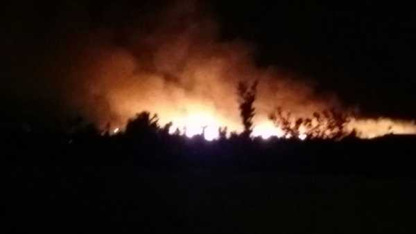 incendio-terrenos-el-datiler-6