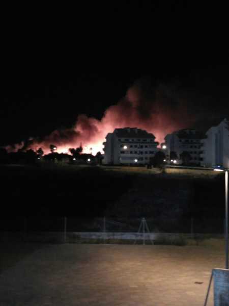 incendio-terrenos-el-datiler-7