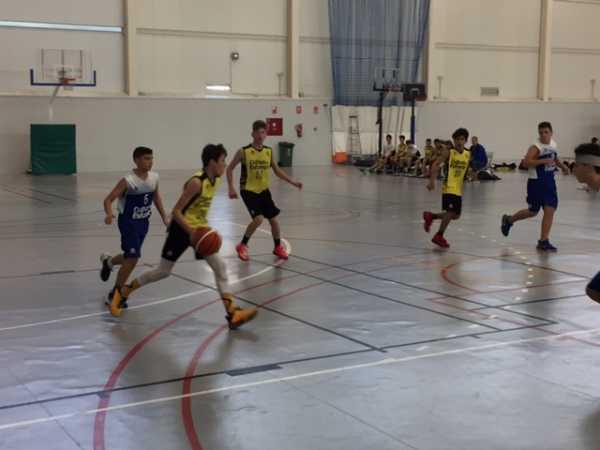 basket (3)
