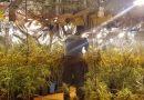 La Guardia Civil desmantela una  plantación de marihuana en Jávea