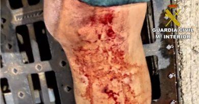 La Guardia Civil investiga las agresiones producidas contra 6 agentes en un encuentro de fútbol en Pego