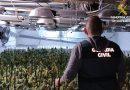 La Guardia Civil desmantela una plantación de marihuana alojada en el sótano de un consolidado restaurante de Teulada