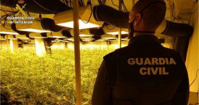 La Guardia Civil desmantela una plantación indoor de marihuana en un chalet de Pego