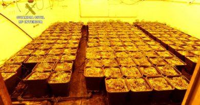 La Guardia Civil detiene a dos personas que ocultaban una plantación indoor en una caseta de Pedreguer