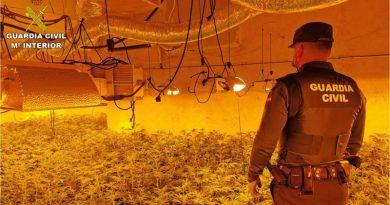 La Guardia Civil interviene 1.000 plantas de marihuana en un chalé de Calpe